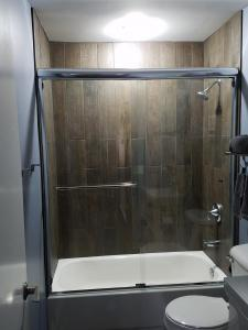 350 Deluxe frameless slider chrome w/clr w/ tubular single mount towel bar and single knob